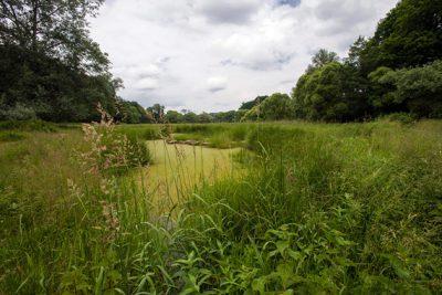 Ein Landschaftsschutzgebiet