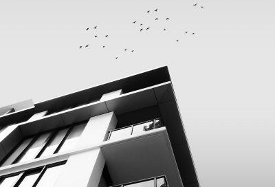 Gebäude von unten, oben fliegen Vögel am Himmel