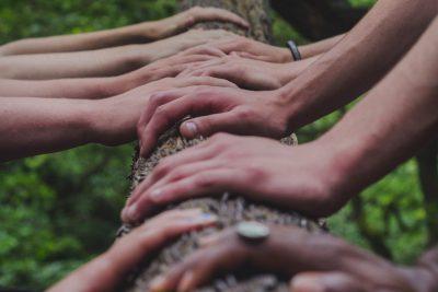 acht Hände auf einem Baumstamm